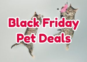 black friday pet deals amazon