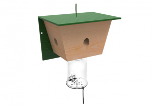 the best carpenter bee trap non lethal