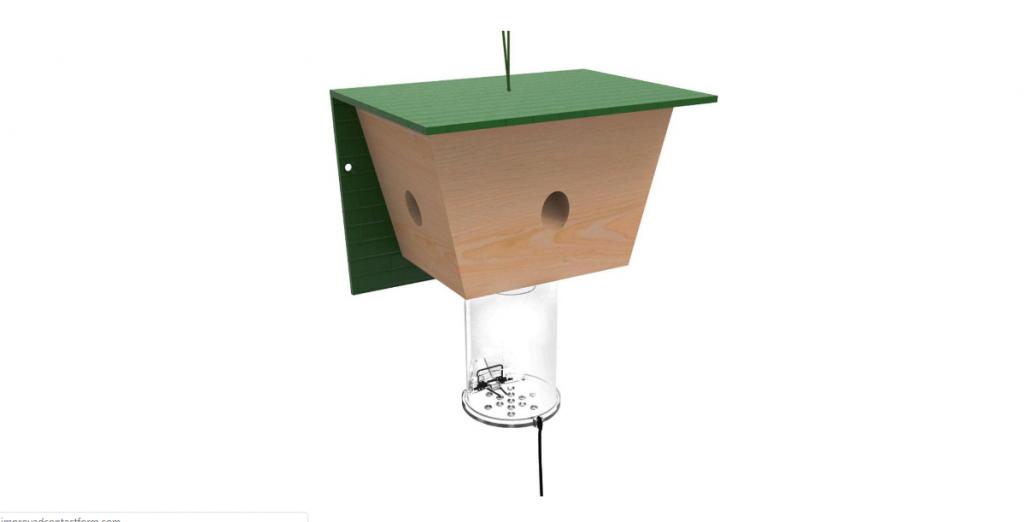best carpenter bee trap ever