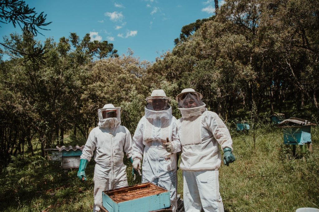 best bee suit for beekeeping