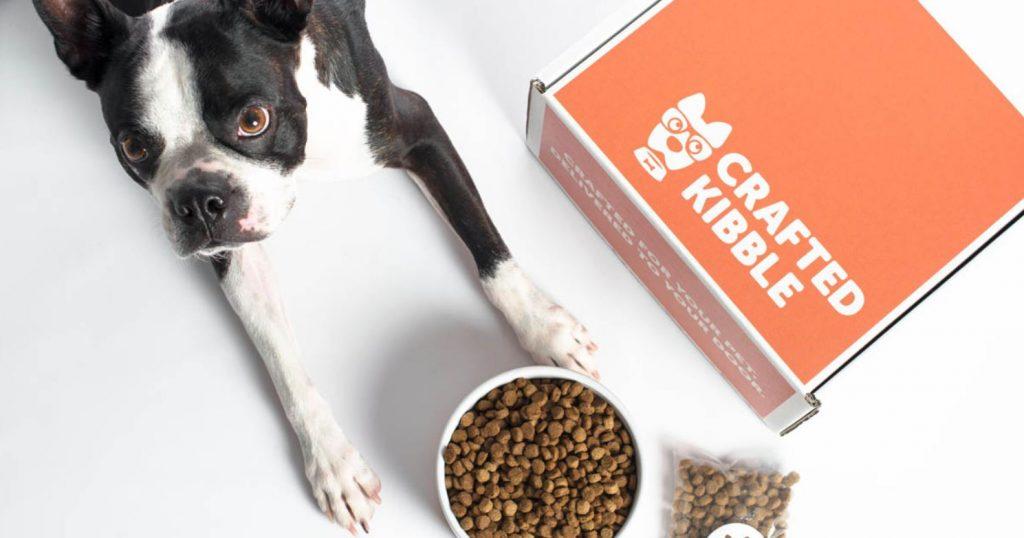 dog food delivery sites