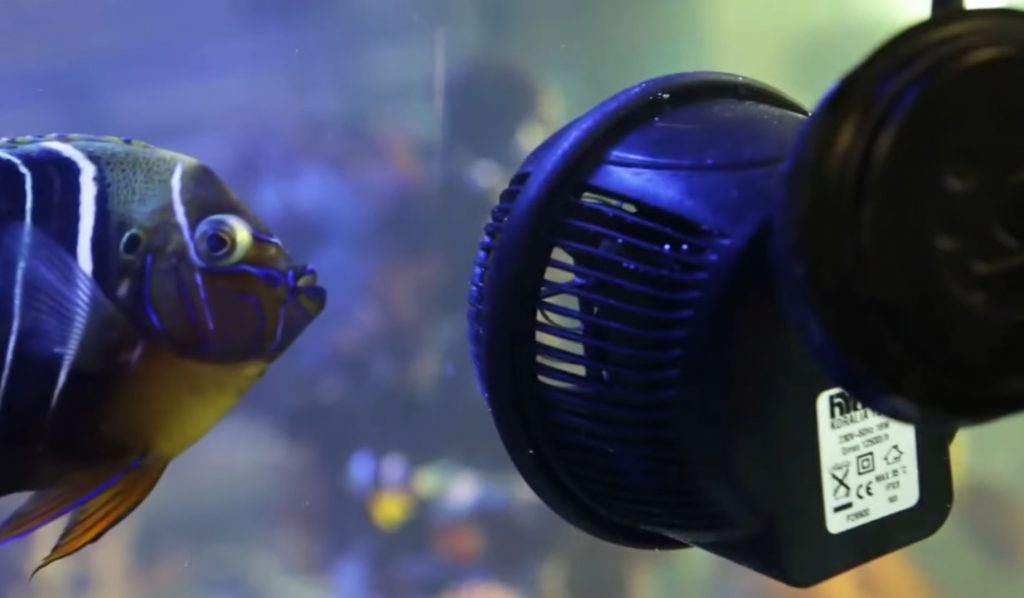 aquarium powerhead review