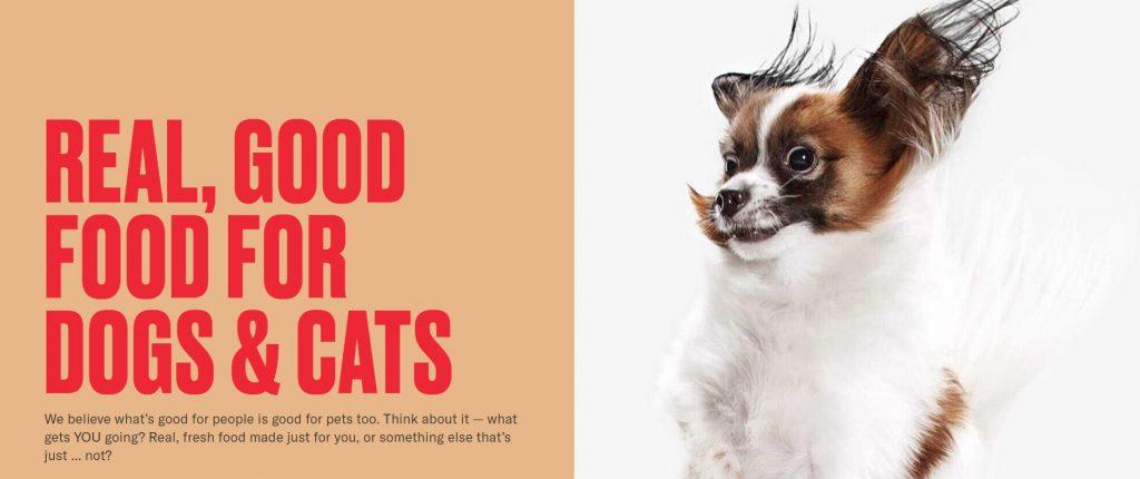 nom nom dog food subscription