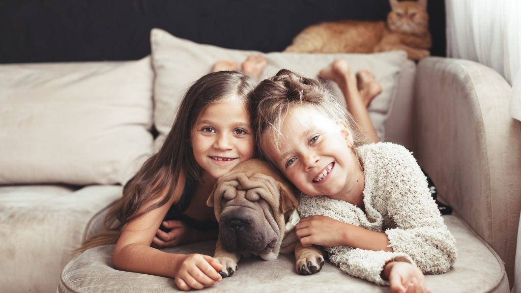 best pets for small spaces