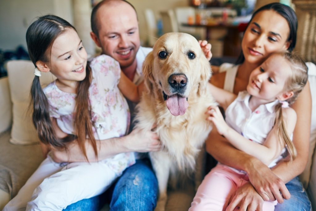 best dog death gifts