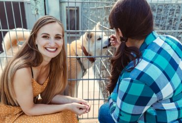 What To Consider Before Adopting A Dog – Don't Be Unaware!