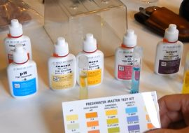 API Freshwater Master Test Kit Review – Everything You Need To Know