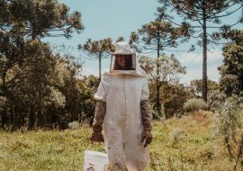 5 Best Beekeeper Veil And Hat Reviews | Stay Safe And Comfortable!