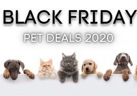 Best Black Friday Deals For Pets 2020 | Dogs, Cats, Aquarium Fish…