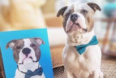 5 TOP Spots to Get High Quality Custom Dog Portraits