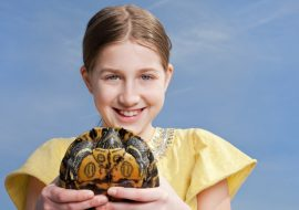How Long Do Pet Turtles Live? The Lifespan Of 4 Pet Turtle Breeds