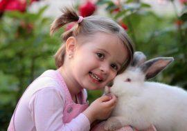 My Rabbit Has Diarrhea! Causes & Cures Of Rabbit Diarrhea