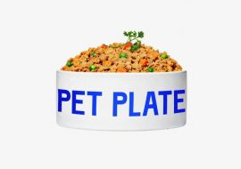 Pet Plate The Shark Tank Dog Food – Where Are They Now?